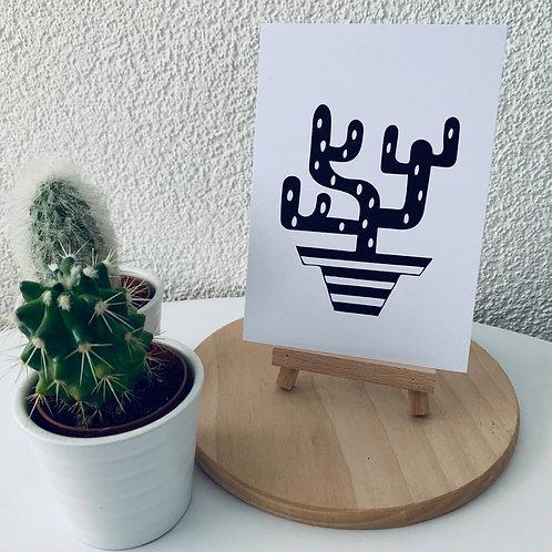 Kaktus mit Stil