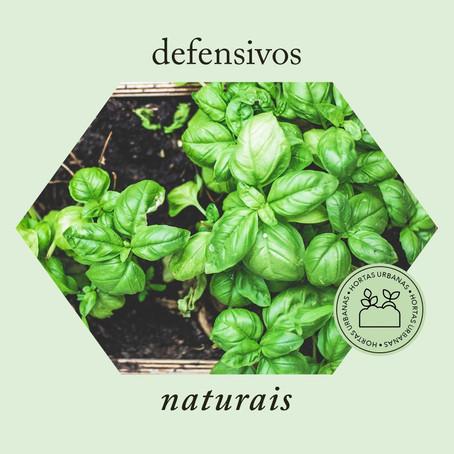 Defensivos Naturais