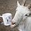 Thumbnail: FARRM Mug - Featuring our Cooper