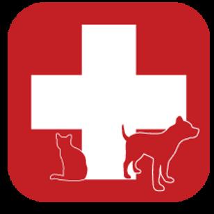 Spay/Neuter - Feline