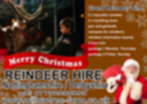 reindeer hire events.jpg