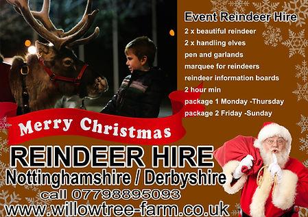 reindeer hire events.jpg