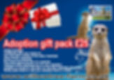 meerkat adoption.jpg