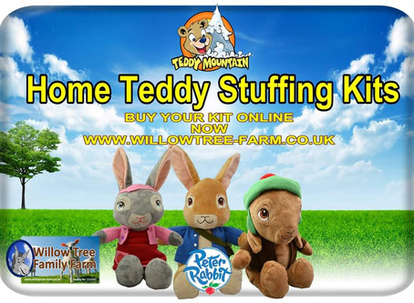 Home bear stuffing kits now available online
