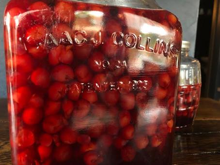 Martha Washington's Cherry Bounce