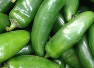 Chilly pepper 'Jalapeno'