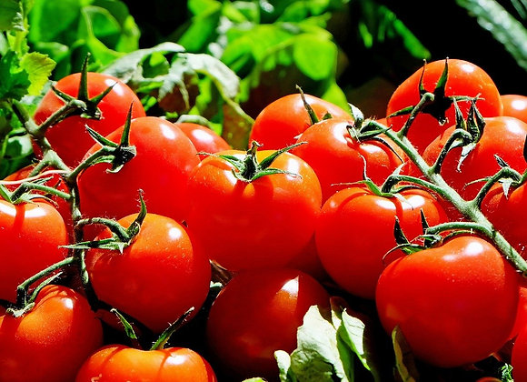 Tomato 'Big Boy'