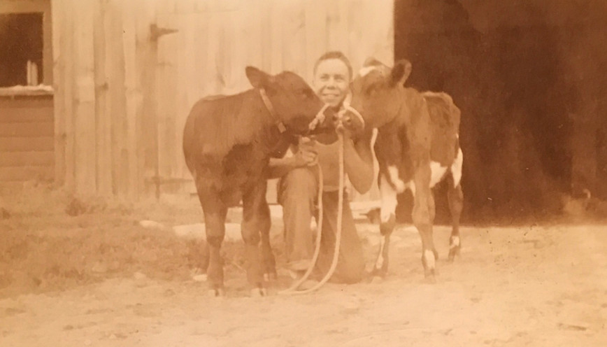 Tom with his first two dairy calves