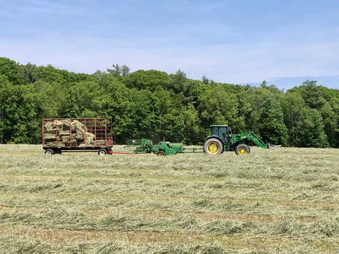 Ray Sawyer baling 2020 hay