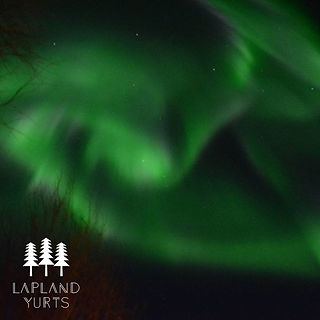 Want to see the Northern Lights_ Head No