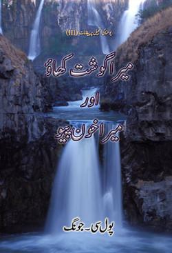 urdu20