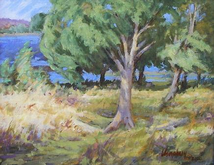 Willow Lake Breezes Umphrey.jpeg