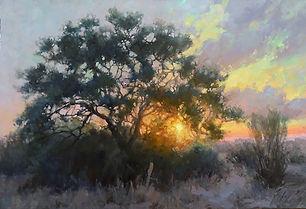 sunset thru oak 30x40.jpg