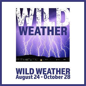 WildWeather_logo.jpg