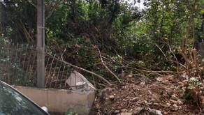 Marco cobra aplicação da lei da limpeza compulsória de terrenos baldios de particulares