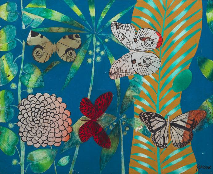 Danae, a borboleta diurna