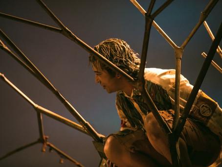 """Raízes e asas: sobre a criação da dramaturgia do espetáculo """"Quase Árvore"""""""