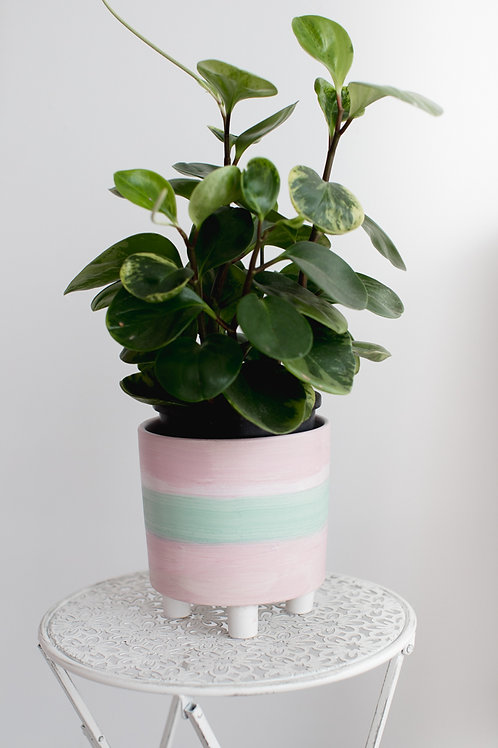 Minty Pink - Made to Order
