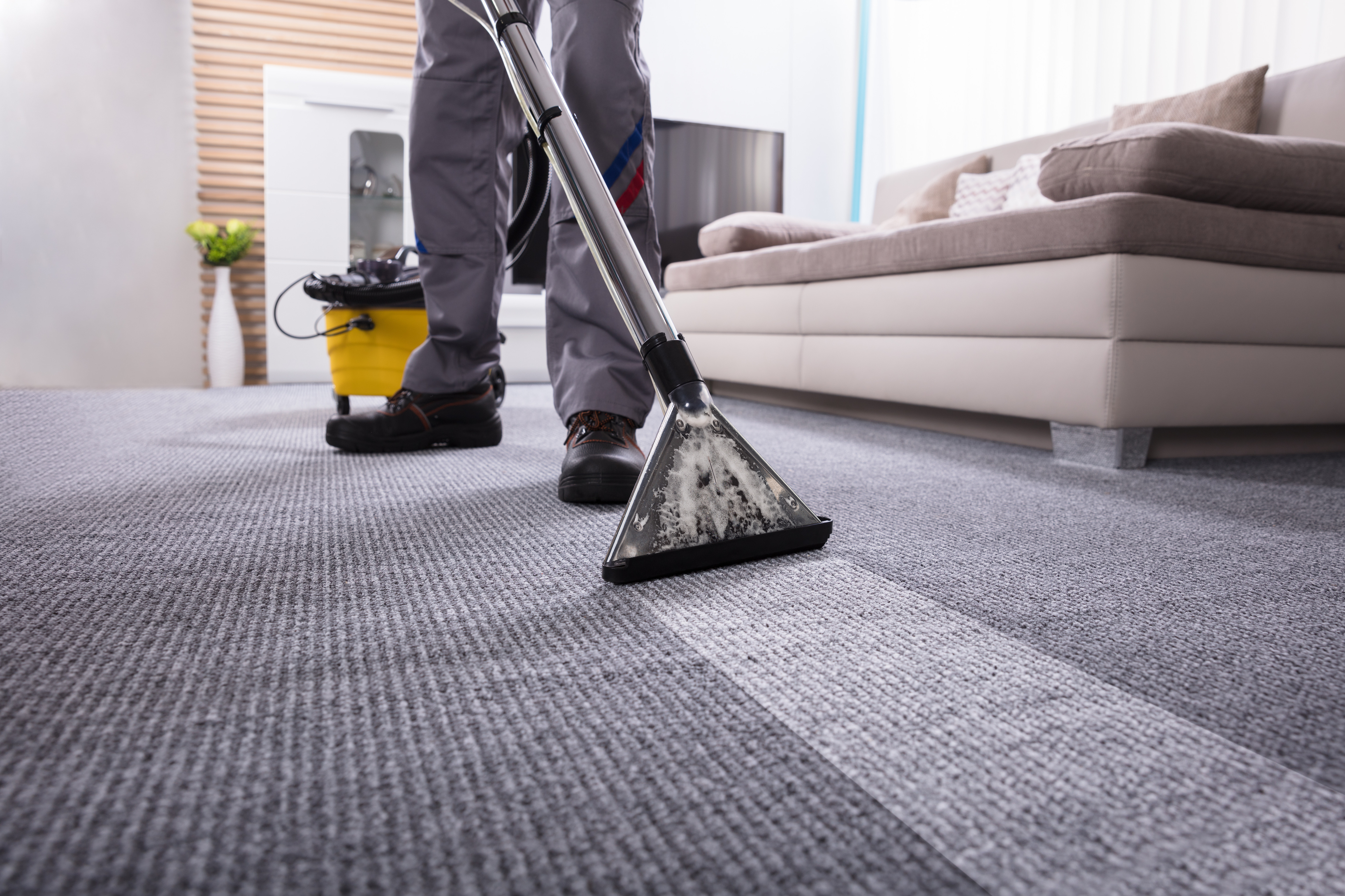 Carpet Cleaning - 6-7 m2