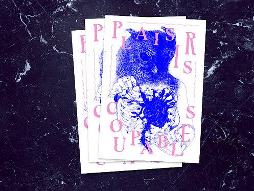 Plaisirs Coupables Postcard