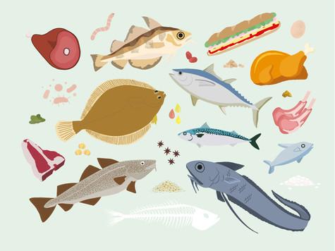 Manuel du Bon Sens Cuisinier : Food