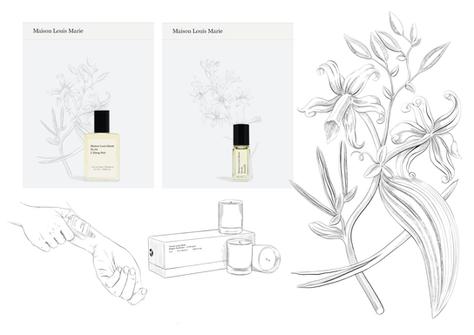 Maison Louis Marie - Botanical & packshot illustrations