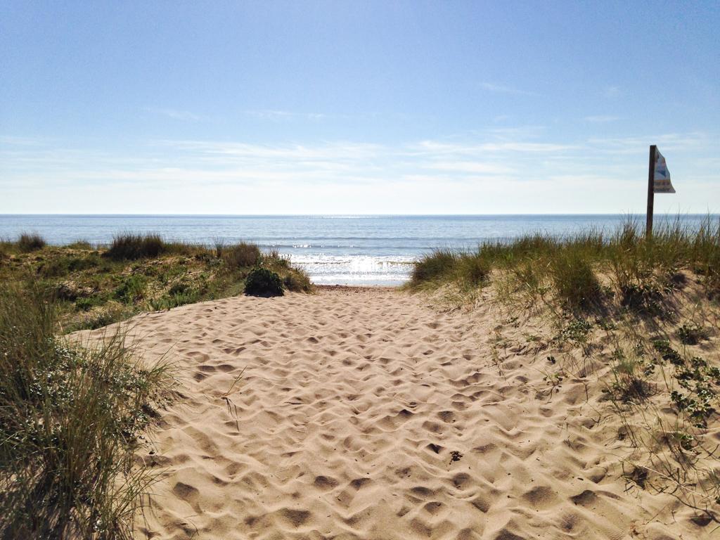 Notre plage / Our beach