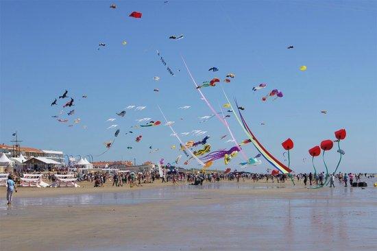Festival A Tout Vent / Kite Festival