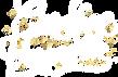 CV Logo White PNG SMALL.png