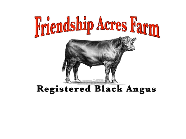 registered black angus cows in tennessee