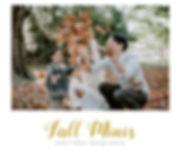 2019 Fall Minis_edited.jpg