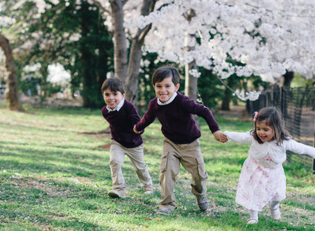 Sneak Peek: Family Portraits with the Cherry Blossoms