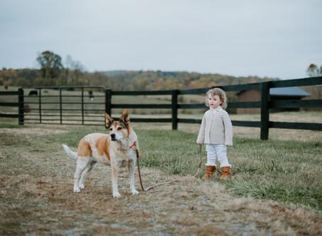 Farmhouse Family Portrait Session / Warrenton, Virginia