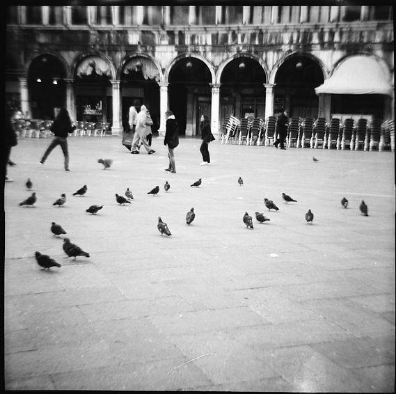 Venedig_2009_92.jpg