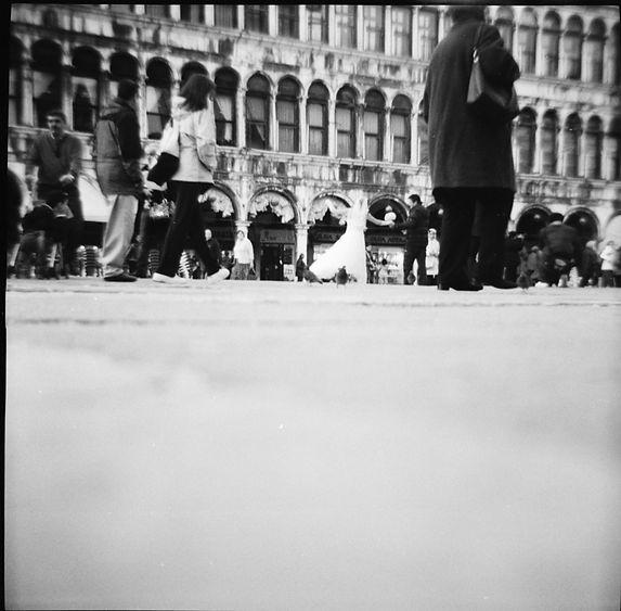 Venedig_2009_90.jpg