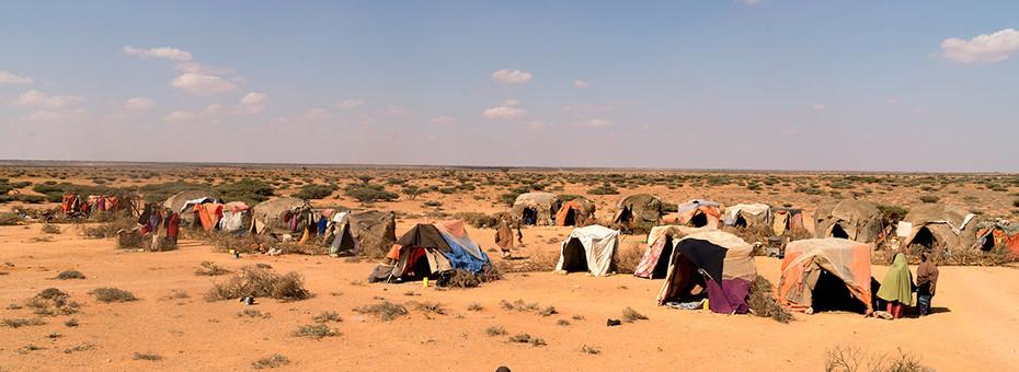 Somali desert.jpg