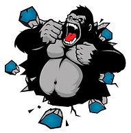 Gorilla-05.jpg