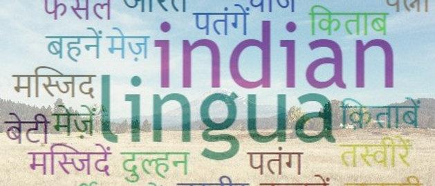 Hindi vocab builder