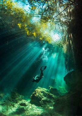 Freediver descent