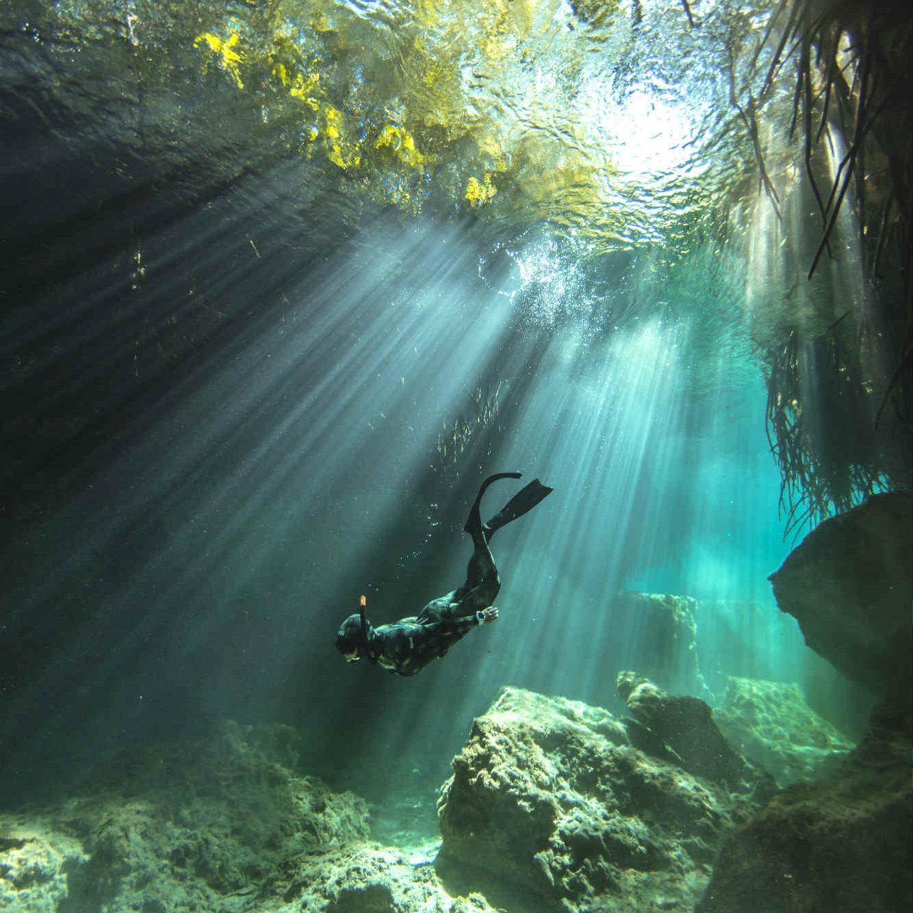Freedive Experience