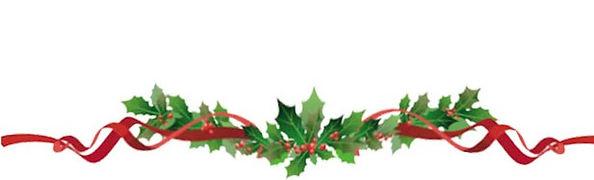 christmas-flowers-holly-930 (2).jpg