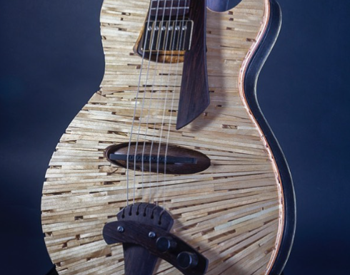 "Notes on the Panel Discussion ""Innovative Design In Modern Guitar Making"""