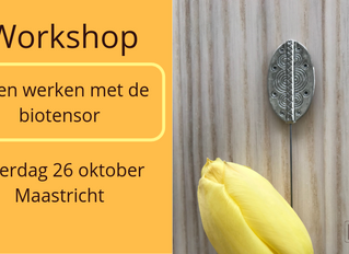 Workshop biotensor (26 oktober 2019)