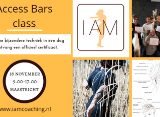Gecertificeerde Access Bars class in Maastricht (16 november)