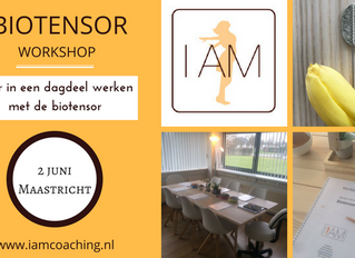 Workshop biotensor 2 juni 2018