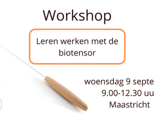 Workshop biotensor (9 september 2020)