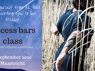 Gecertificeerde Access Bars class in Maastricht (6 september 2020)