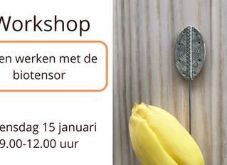 Workshop biotensor (15 januari 2020)