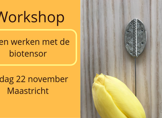 Workshop biotensor (22 november 2019)