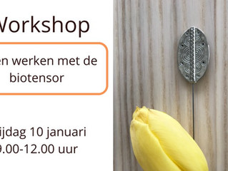 Workshop biotensor (10 januari 2020)